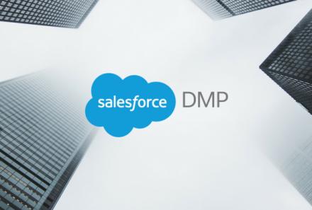 Salesforce Data Management Platform (DMP)