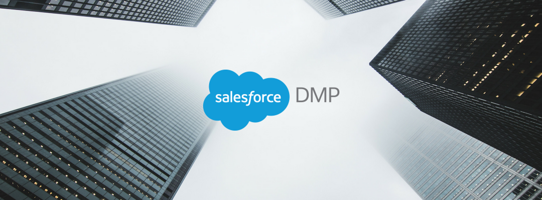 Salesforce Data Management Platform (DMP)